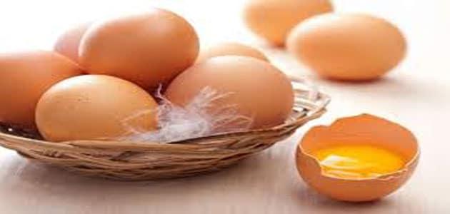 تفسير رؤية البيض في المنام ومعناه بالتفصيل مفسر