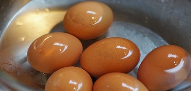 تفسير حلم رؤية البيض
