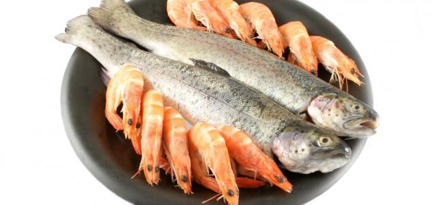 رؤية السمك النيء في المنام للمطلقة والمتزوجة والعزباء