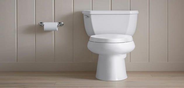 تفسير رؤية البراز في المرحاض في المنام