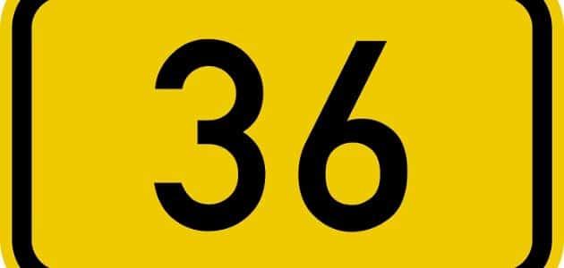 تفسير رؤية رقم 36 في المنام وما الذي يدل عليه رقم 36