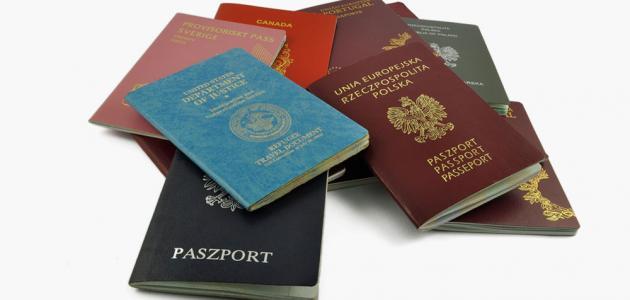 جواز السفر في المنام بشارة خير